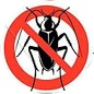 Fumigation & Pest Control Services